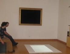 Gato, o novo flâneur (2009)